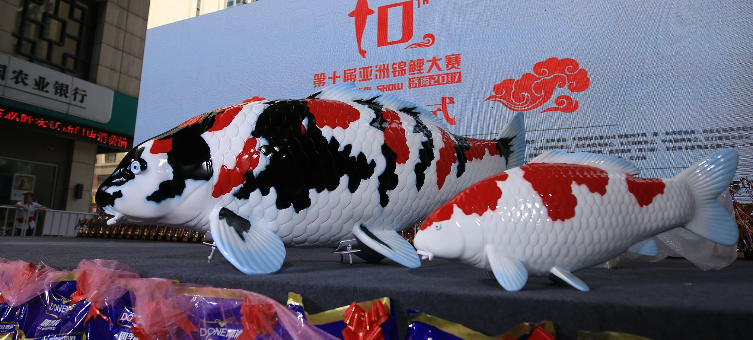 Decoración Koi